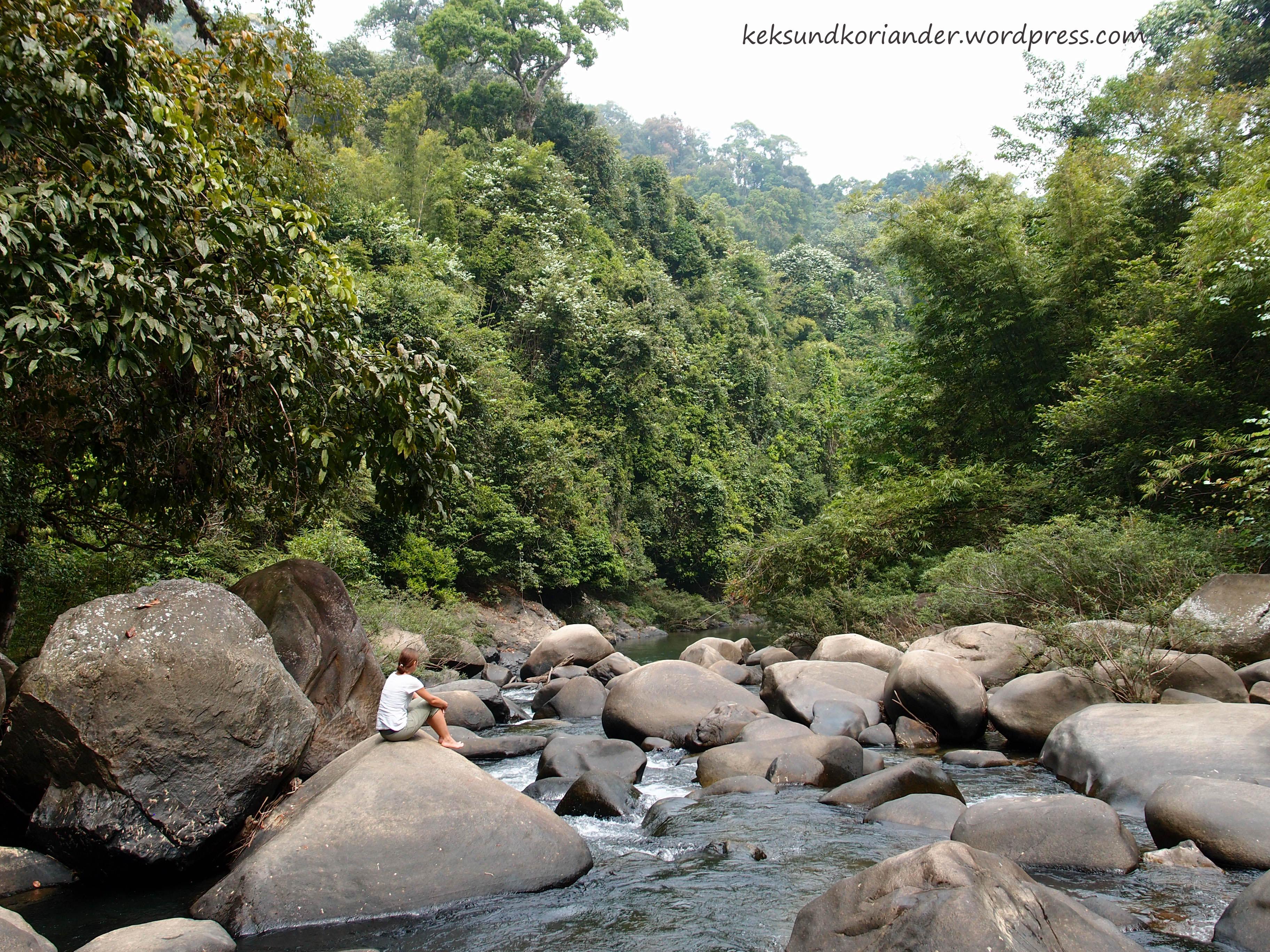 Khao Sok National Park Wanderung Thailand