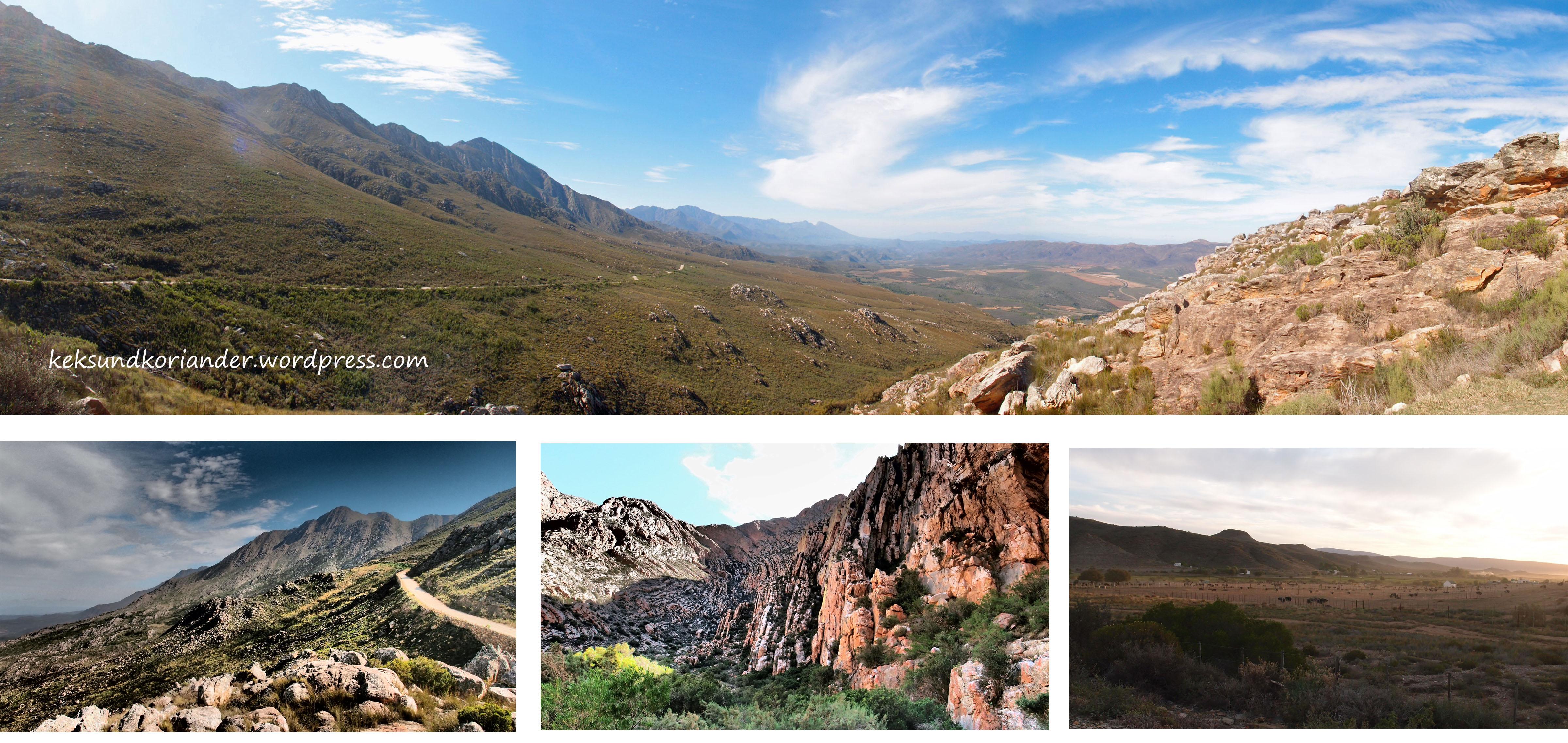 oudtshoorn little karoo garden route südafrika