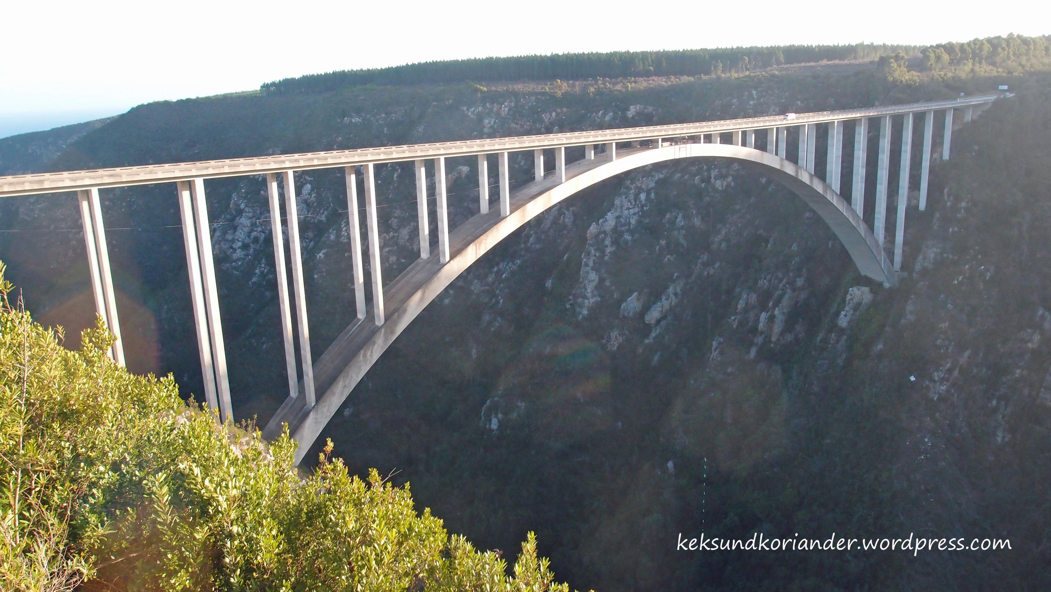 Garden Route Bungee Sprung Südafrika