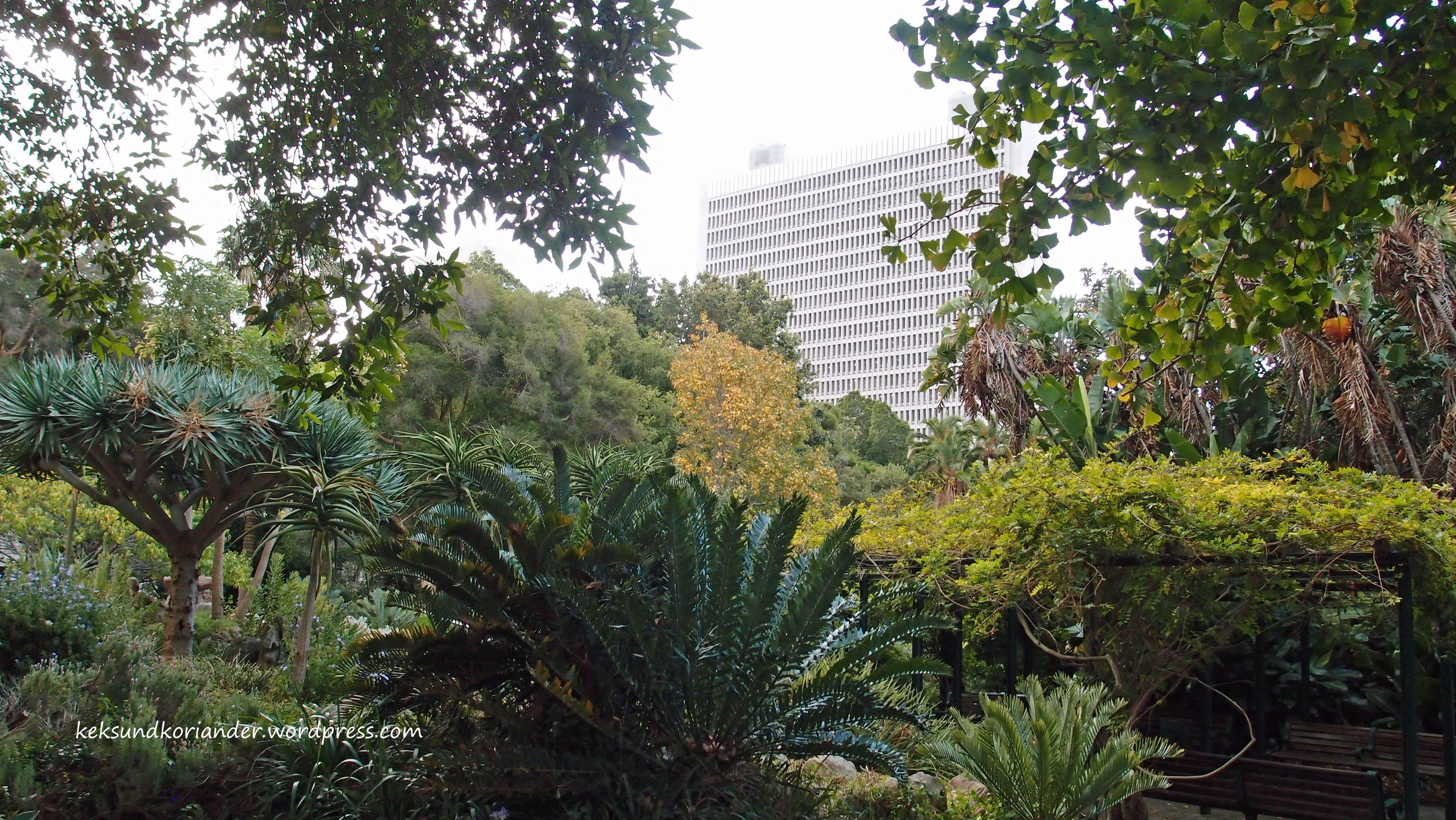 Kapstadt Südafrika botanischer Garten