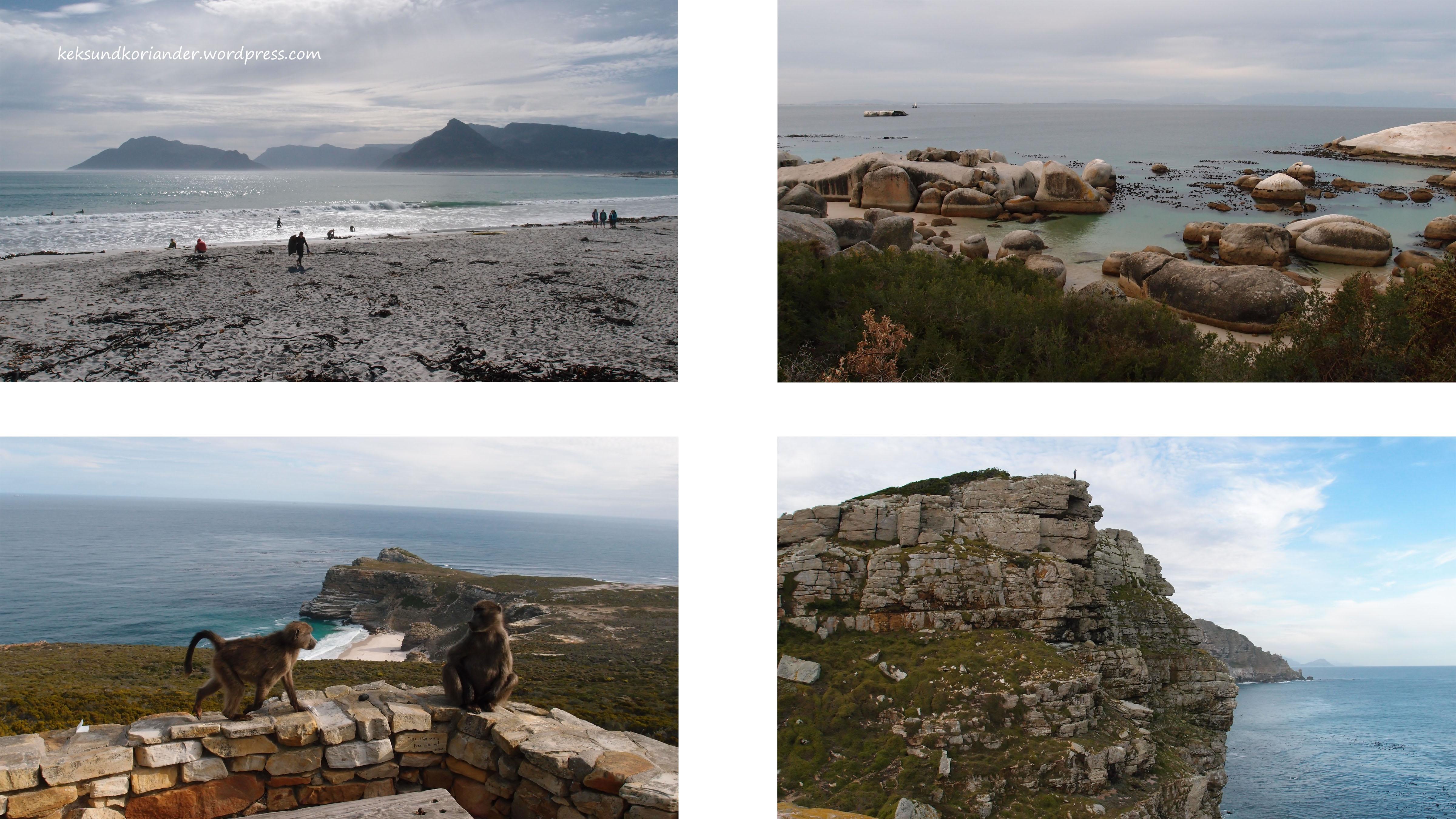 Kap der guten Hoffnung Südafrika Kapstadt Affen Boulders