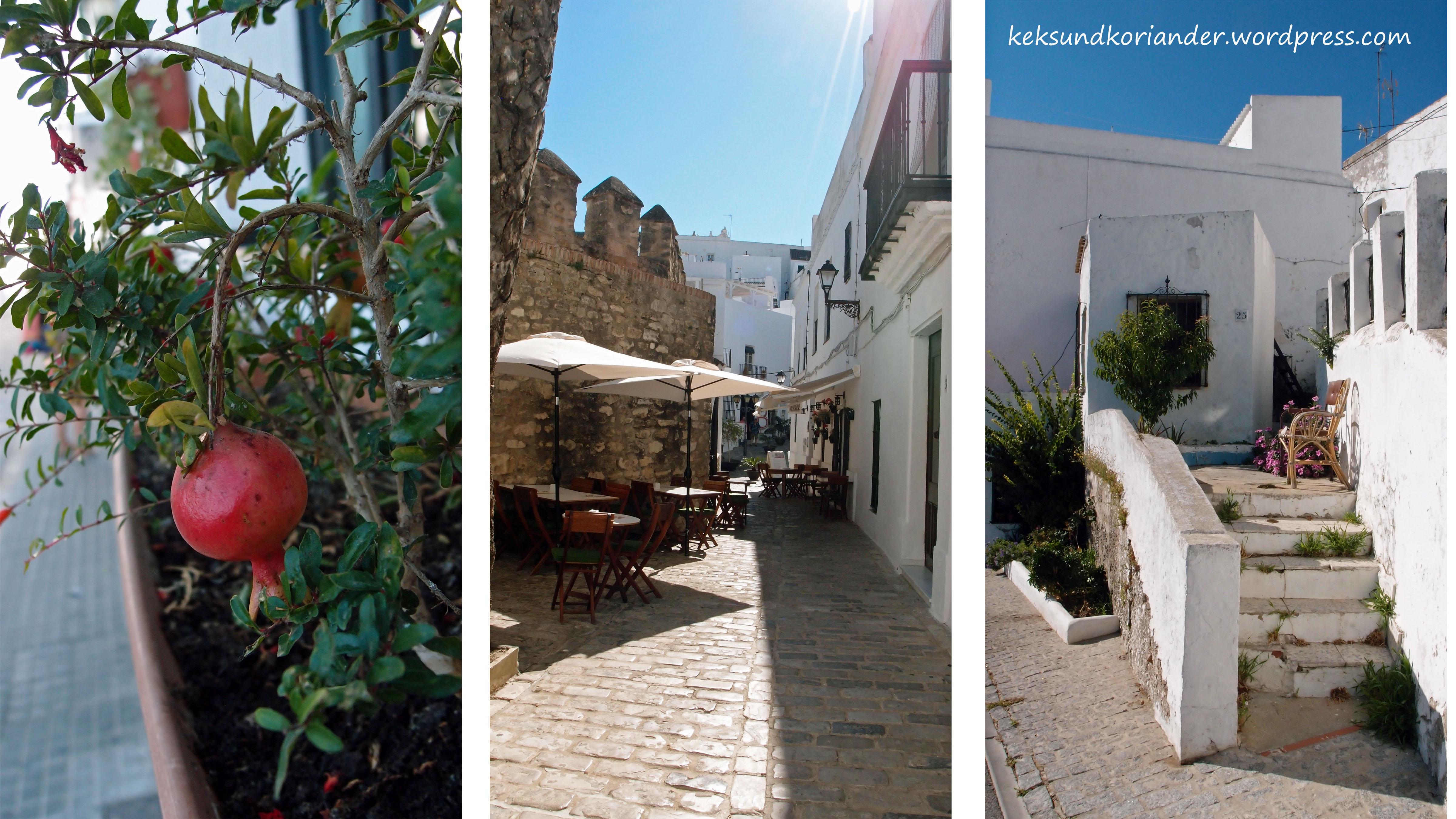 Vejer Andalusien Spanien weiße Stadt2
