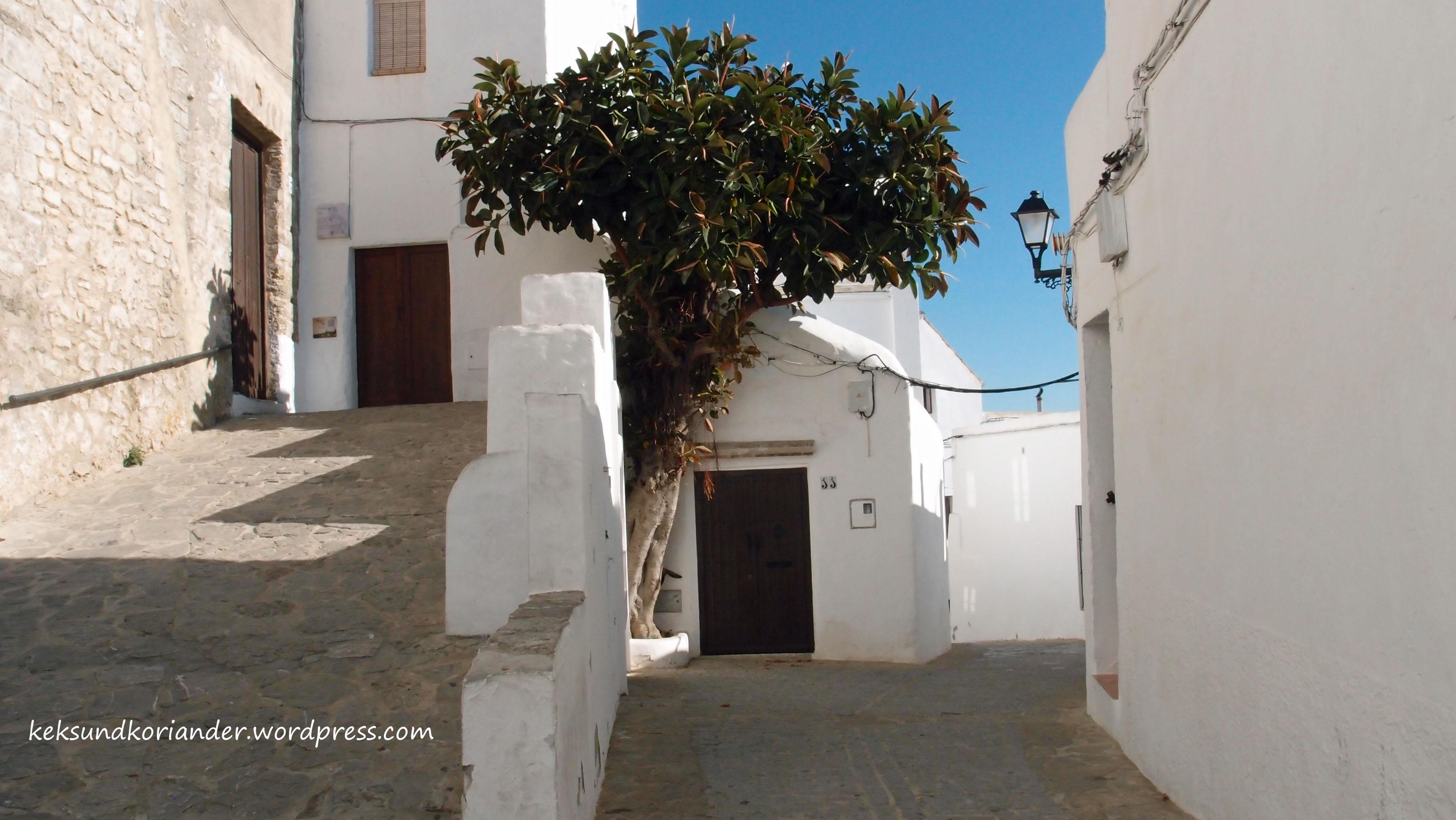 Vejer de la Frontera Andalusien Spanien Altstadt