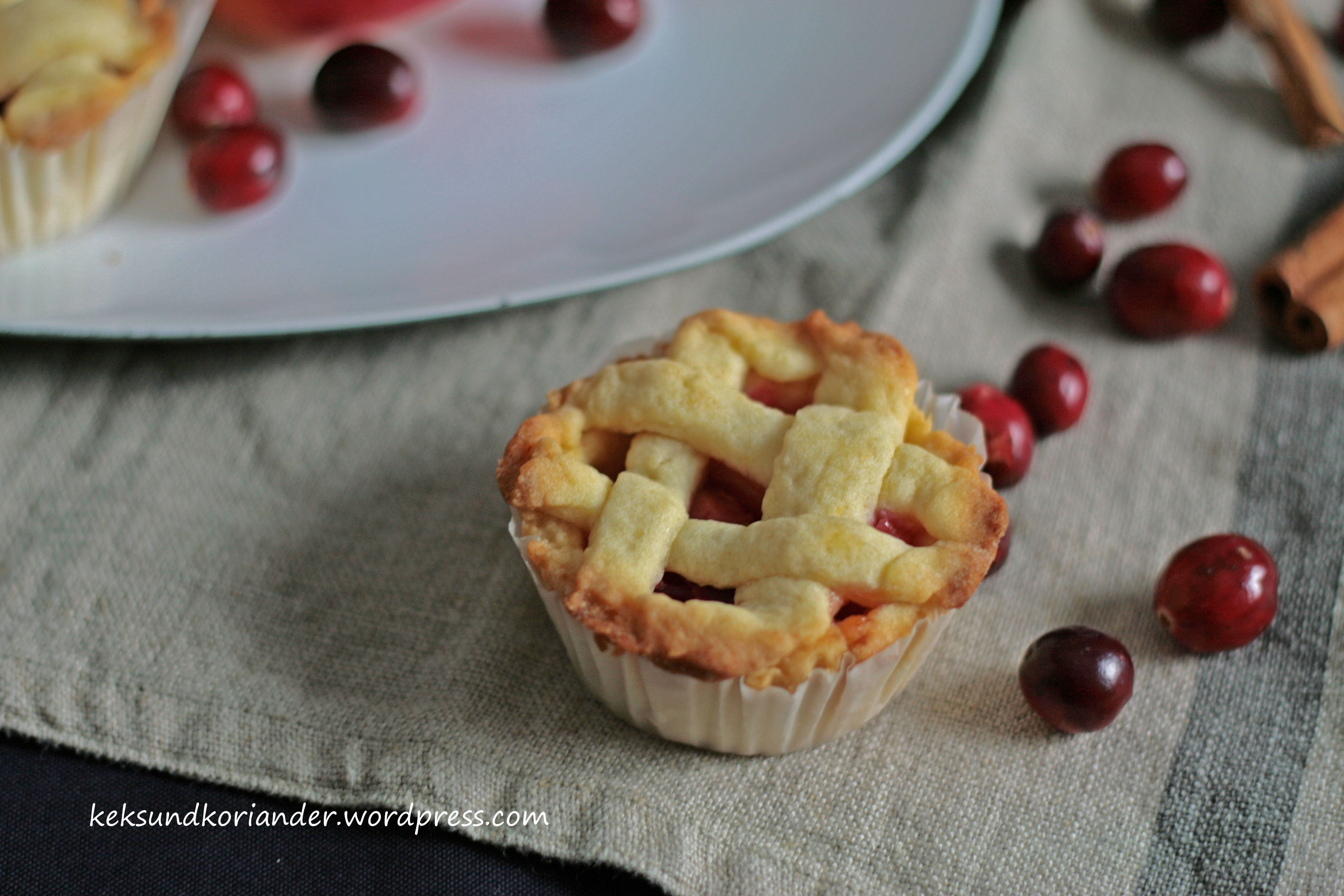 Mini Apple Cranberry Pie mit Zimt 2