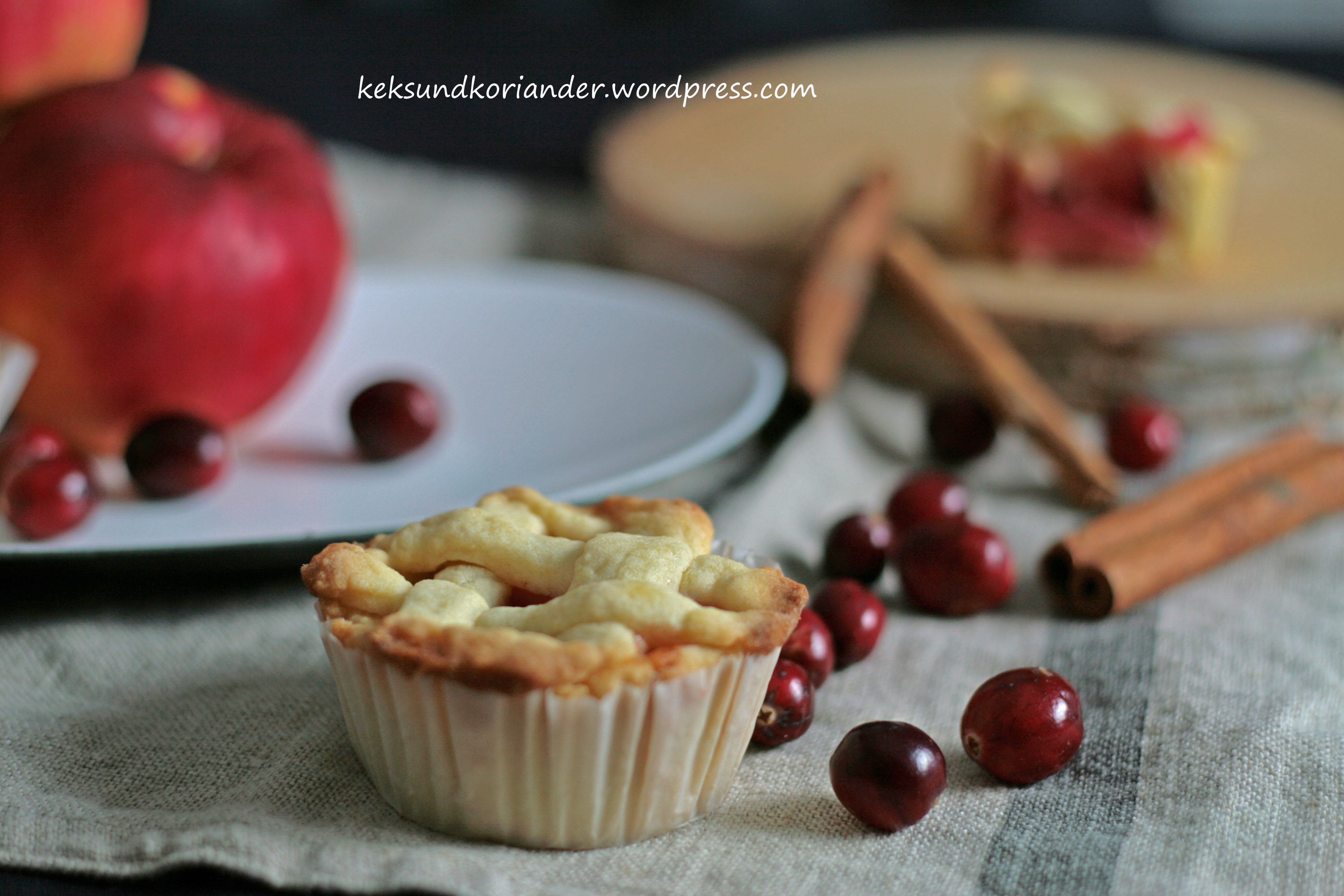Mini Apple Cranberry Pie mit Zimt 4
