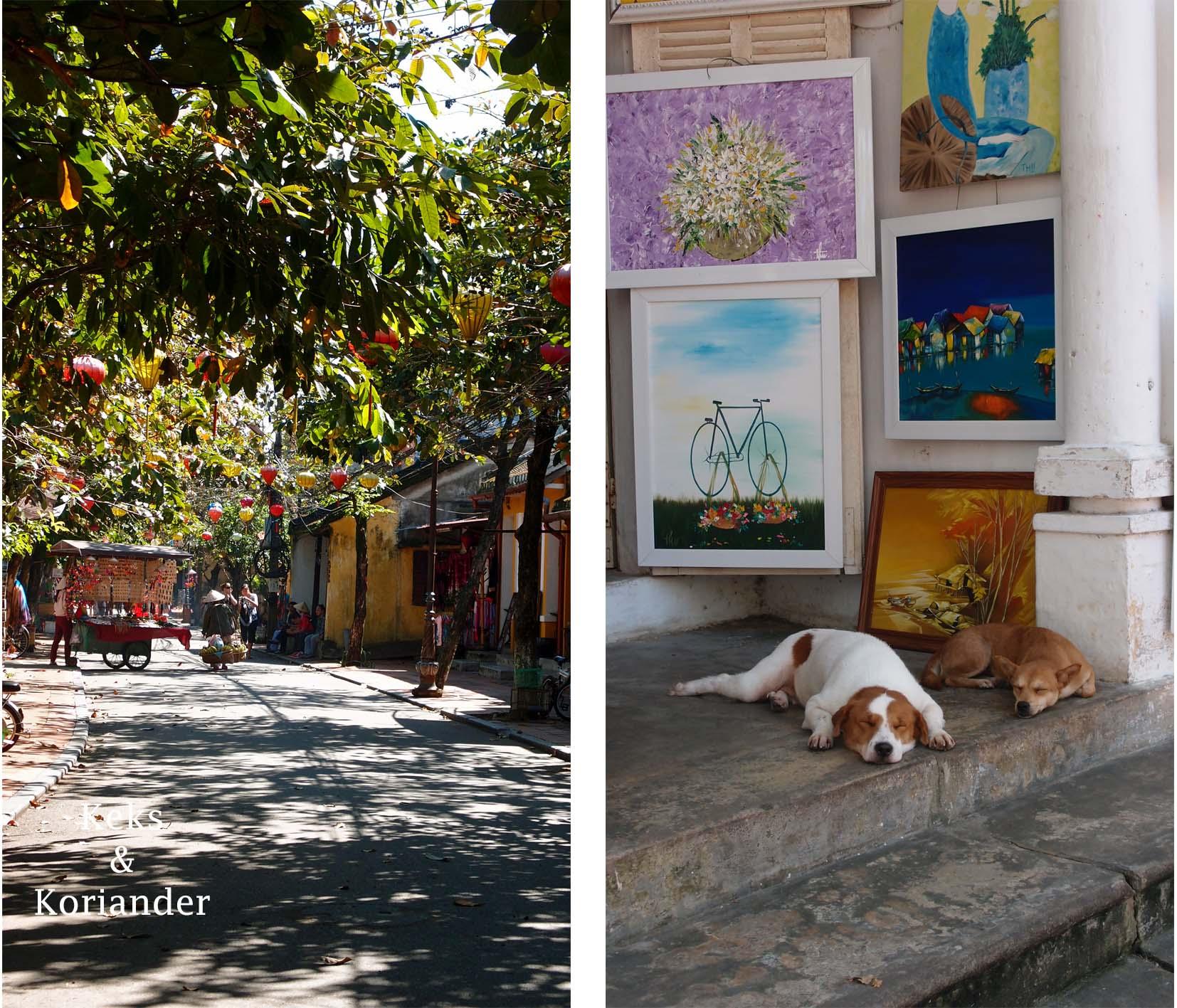 Hoi An Vietnam alte Häuser Lampions Hunde