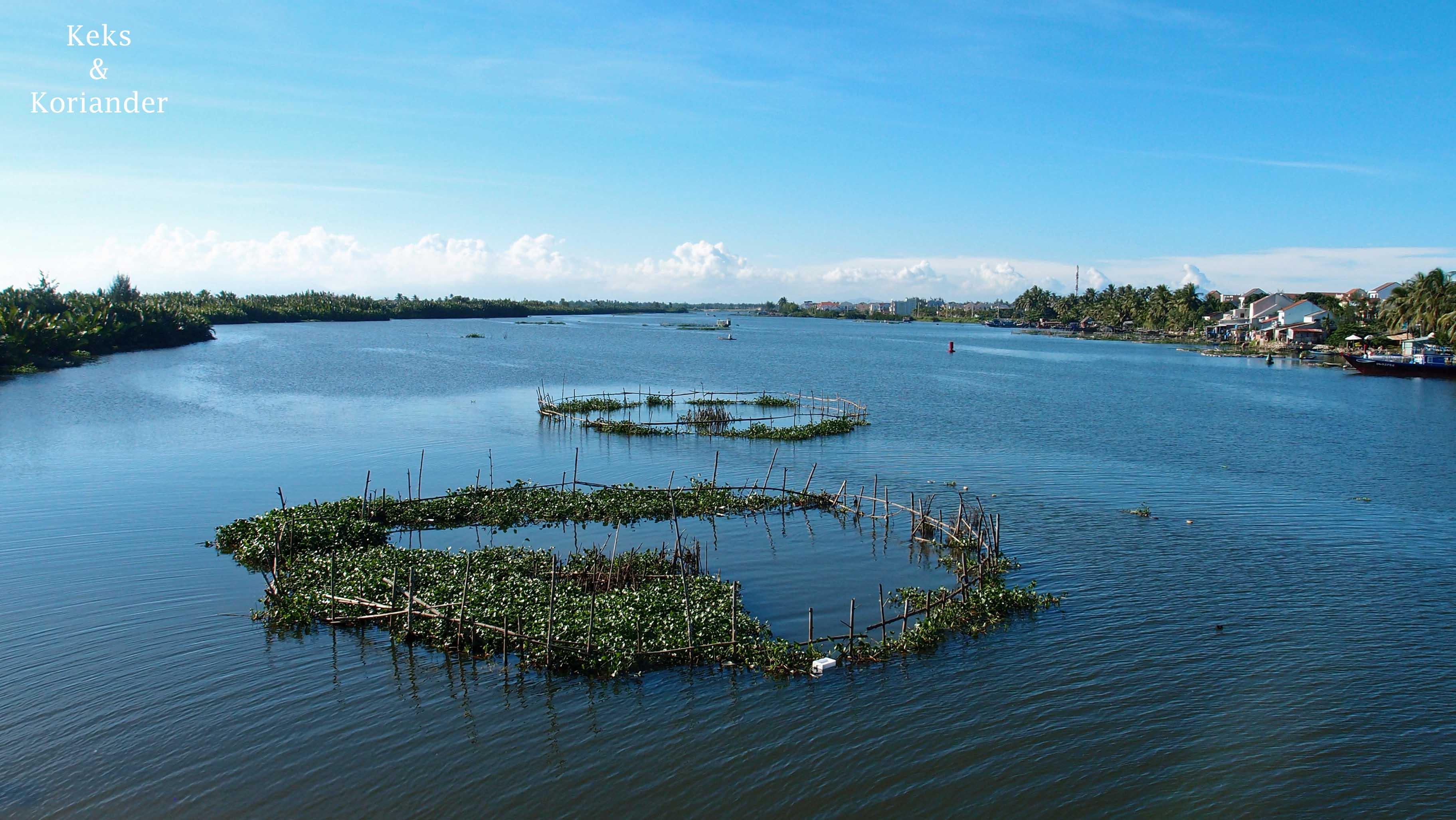 Hoi An Vietnam Seen Fischfang