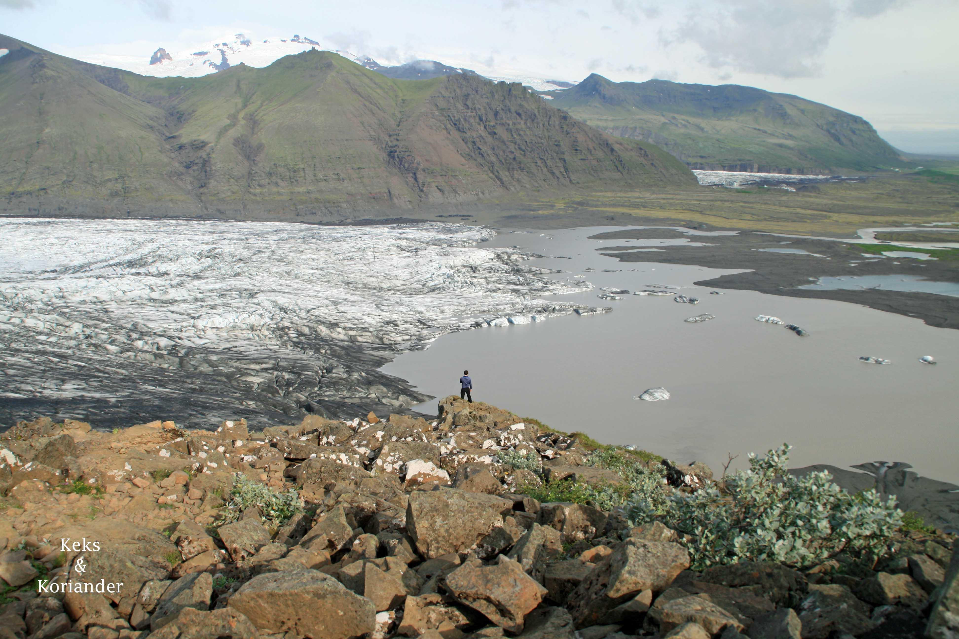Gletscherzunge Skydararjökul Island