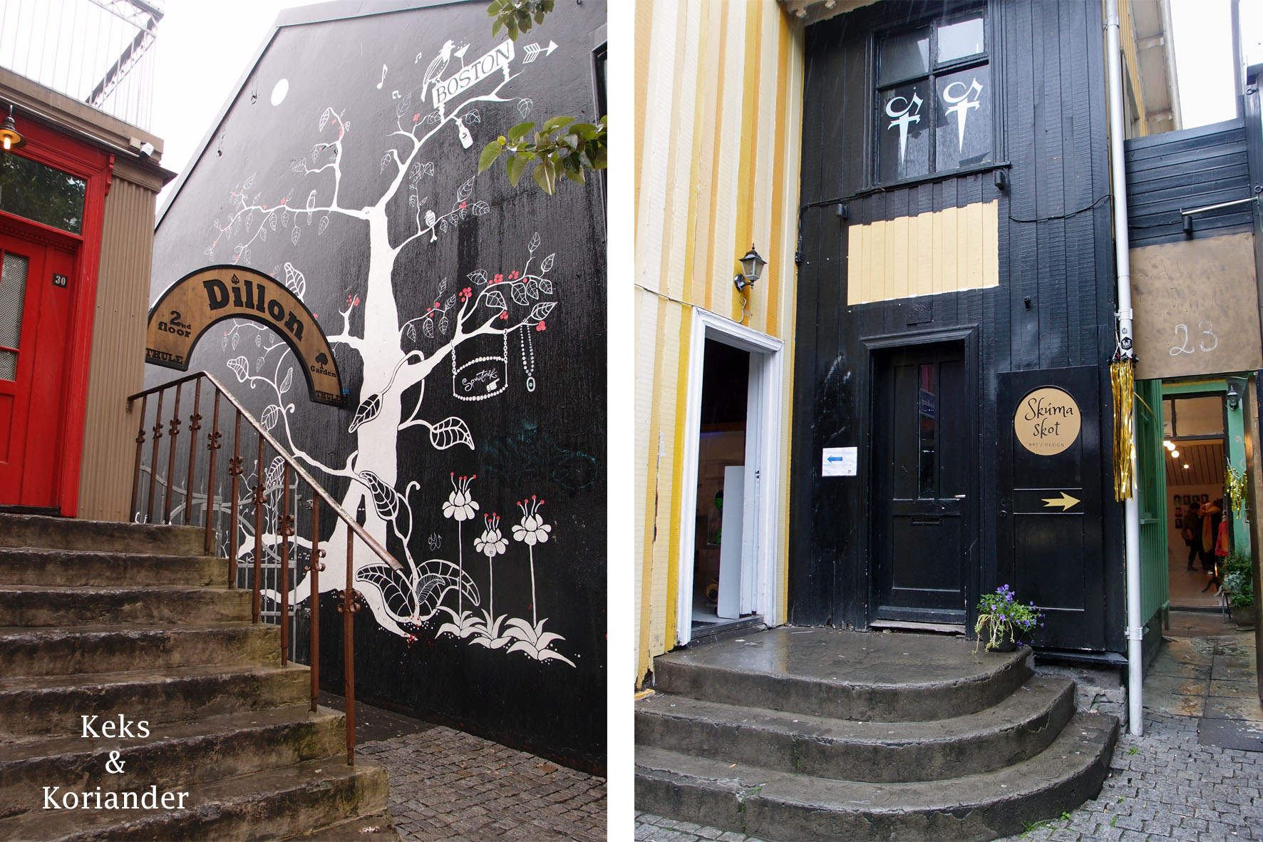 Reykjavik Eingänge Fusgängerzone Malereien Island