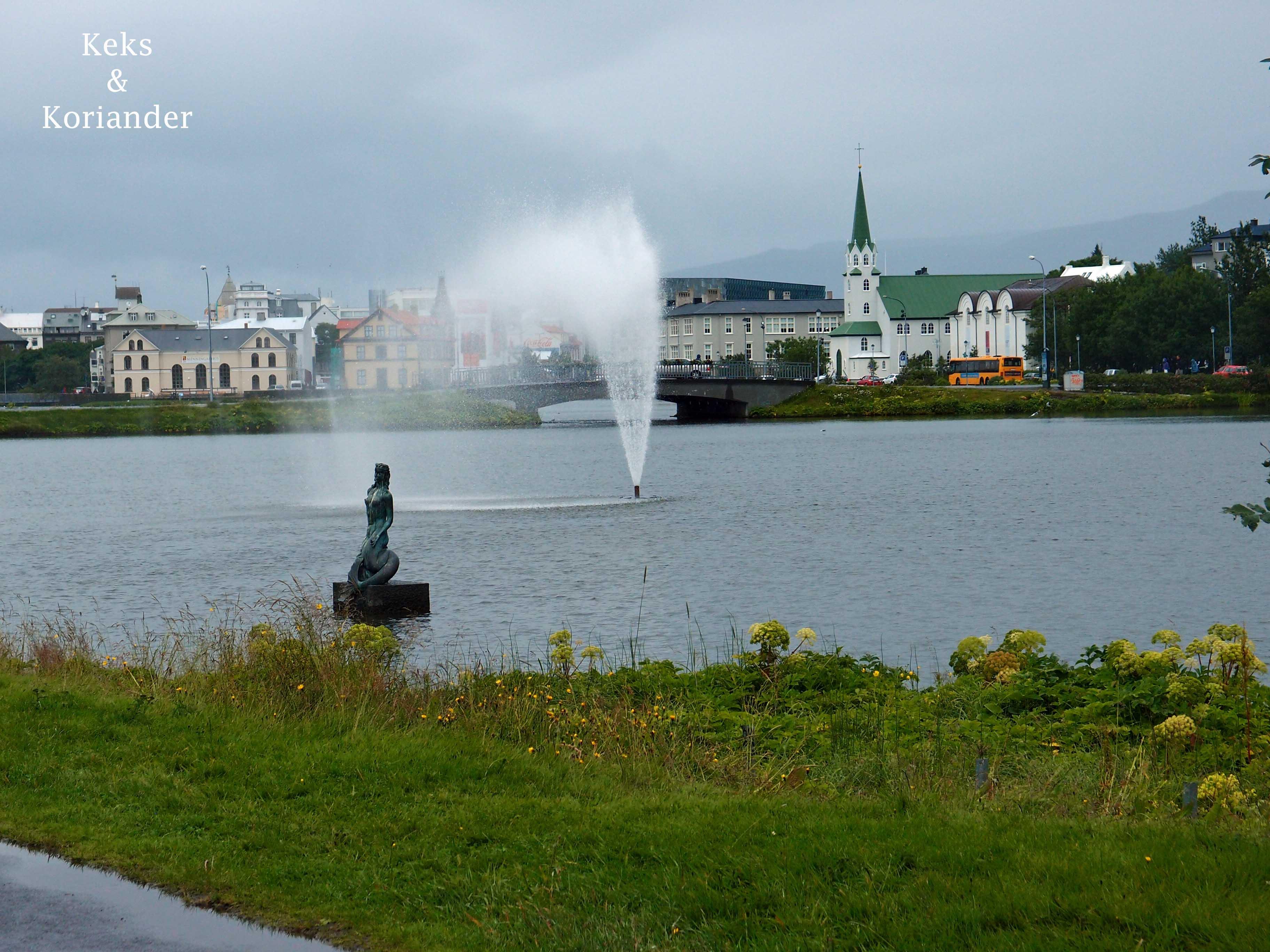 Stadtsee Reykjavik Island