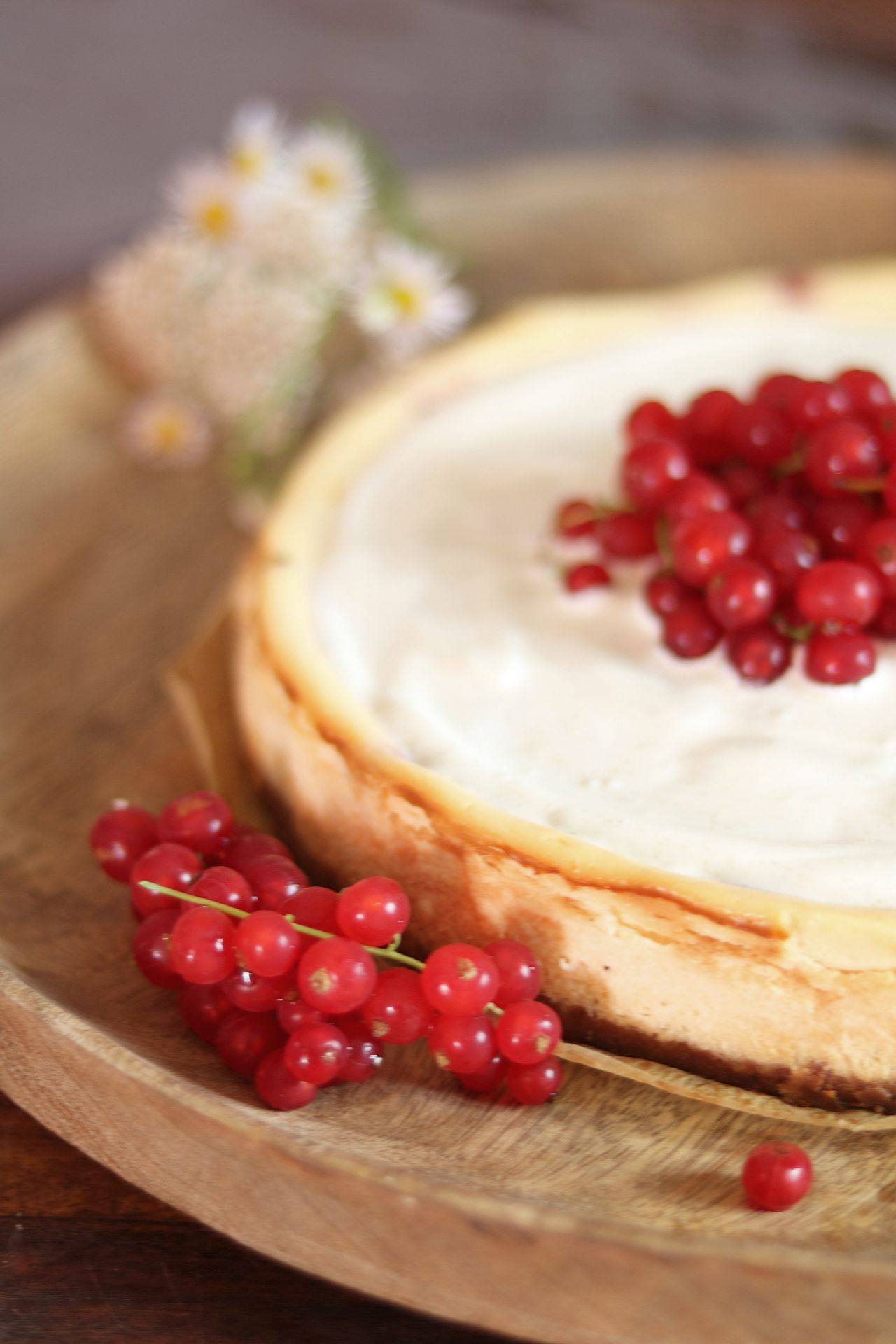 Käsekuchen mit Johannisbeeren, Schmandcreme und Keksboden
